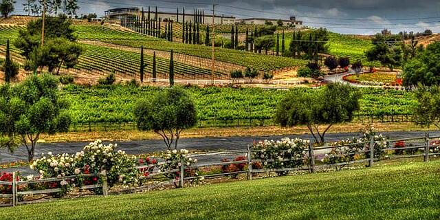 San Diego California Temecula Callaway Vineyard & Winery