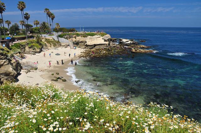 La Jolla Cove Beach San Diego California