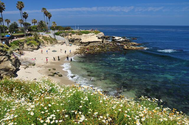 La Jolla Cove Beach San Diego California